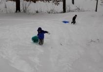 sledding fun