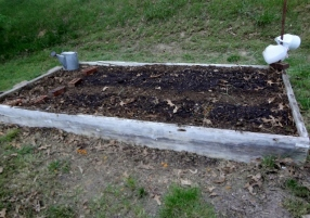 seed bed