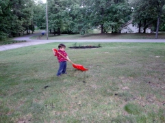 Littlest helping with yard work
