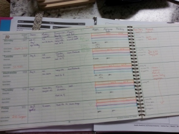 my planner in progress
