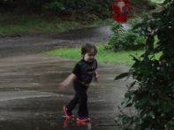 Littlest in the rain