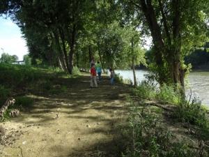 exploring the river