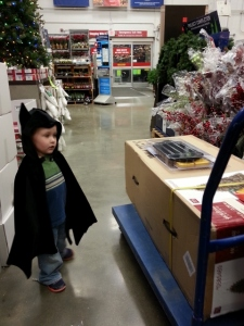 Batman helped up pick out a new Christmas tree