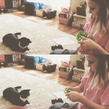 Boots loves knitting