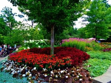zoo flowers