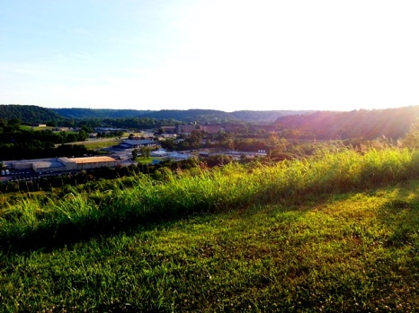 Frankfort from Archery Park