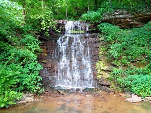 falls at Cove Springs