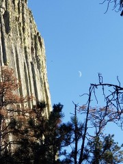 the tower and the moon